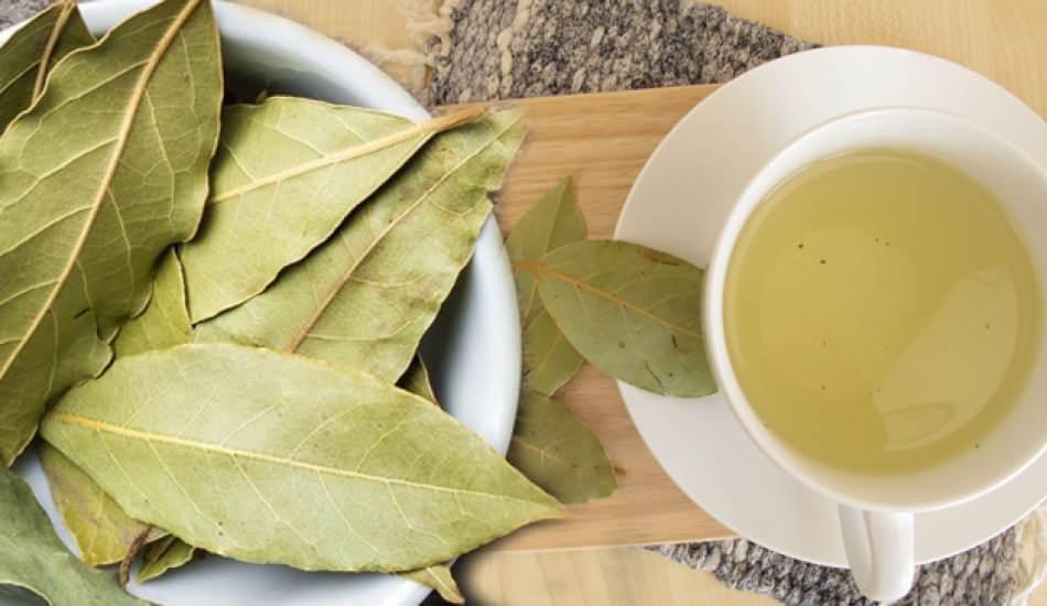Ceviz yaprağı çayının faydaları saraçoğlu
