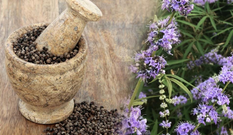 Hayıt tohumunun faydaları saraçoğlu